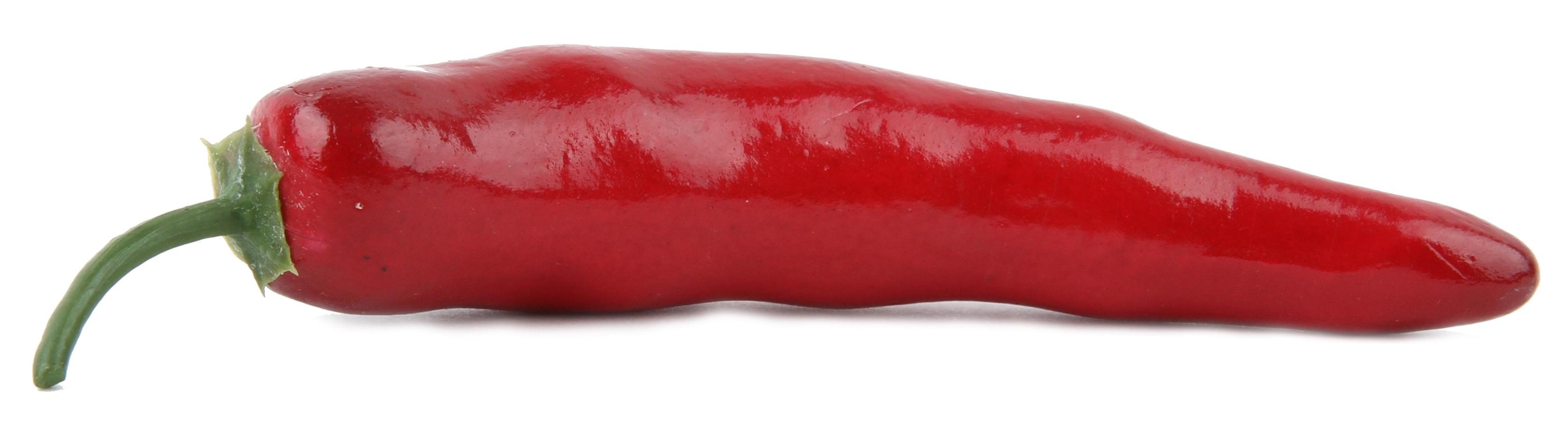 00824847626d Chilipeper – Creagroen